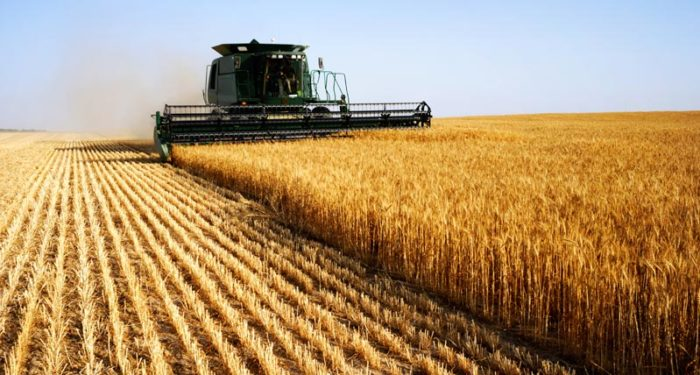 rolnictwo-ilustracja
