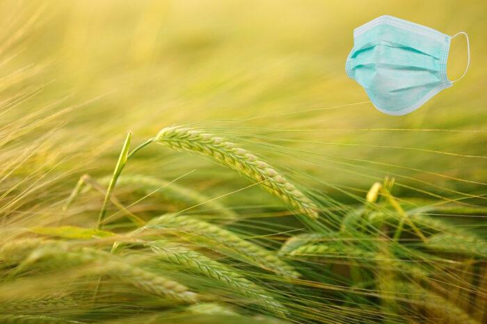 Maseczka na tle pola