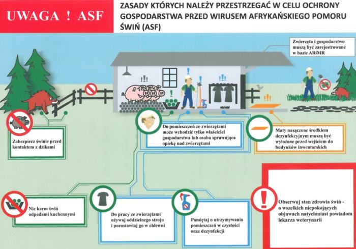 Schemat zasad których należy przestrzegać w celu ochrony gospodarstwa przed wirusem afrykanskiego pomoru świń