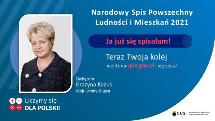 baner reklamujący NSP2021